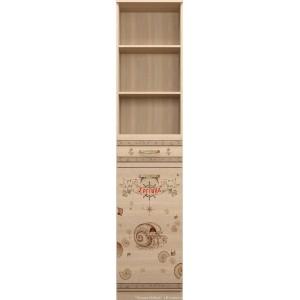 Шкаф-стеллаж Квест 21